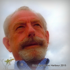 Dave Harbour Cuenca Rooftop Selfie 3-16-15 3-16-2015 3-27-24 AM 1799x1794