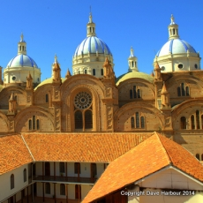 CATHEDRAL DE LA INMACULADA CONCEPTION 9-25-14 by Dave Harbour 4475x4477.NEF
