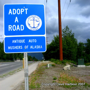 Adopt a road, Anchorage School District, Antique Auto Mushers of Alaska, Dandelions, Photo by Dave Harbour